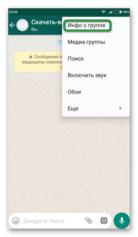 Пункт Инфо о группе WhatsApp